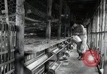 Image of Fulbright Program Japan, 1961, second 8 stock footage video 65675026749
