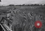 Image of Allied POWs rescued from Japanese Cabanatuan prison camp Luzon Philippines, 1945, second 5 stock footage video 65675026771