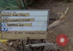 Image of Maj Gn John J Tolsin on work during Operation Delaware A Shau Valley Vietnam, 1968, second 4 stock footage video 65675026861