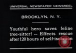 Image of cat rescued by a young man Brooklyn New York City USA, 1930, second 4 stock footage video 65675026886