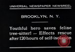 Image of cat rescued by a young man Brooklyn New York City USA, 1930, second 5 stock footage video 65675026886