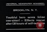 Image of cat rescued by a young man Brooklyn New York City USA, 1930, second 7 stock footage video 65675026886