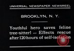 Image of cat rescued by a young man Brooklyn New York City USA, 1930, second 9 stock footage video 65675026886