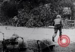 Image of Tet Offensive Battle of Hue Hue Vietnam, 1968, second 9 stock footage video 65675027014