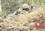 Image of United States soldiers Vietnam, 1967, second 8 stock footage video 65675027036