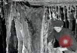 Image of wool factory Mazamet France, 1950, second 1 stock footage video 65675027108
