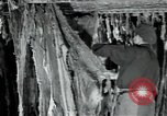Image of wool factory Mazamet France, 1950, second 4 stock footage video 65675027108
