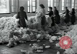 Image of wool factory Mazamet France, 1950, second 9 stock footage video 65675027110