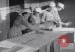 Image of World War I British Women war time jobs United Kingdom, 1915, second 3 stock footage video 65675027185