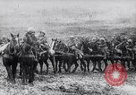 Image of French artillery being positioned Monchy France, 1915, second 11 stock footage video 65675027252