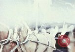 Image of horse drawn carriage Washington DC USA, 1976, second 1 stock footage video 65675027398