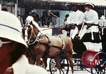 Image of horse drawn carriage Washington DC USA, 1976, second 8 stock footage video 65675027398