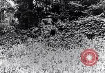 Image of Renault FT-17 Light Tank France, 1918, second 8 stock footage video 65675027506