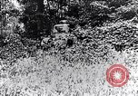 Image of Renault FT-17 Light Tank France, 1918, second 9 stock footage video 65675027506