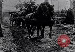 Image of British soldiers move supplies on horse-drawn wagons France, 1916, second 12 stock footage video 65675027526