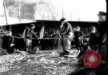 Image of Old fishermen Sidmouth England, 1916, second 6 stock footage video 65675027556