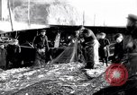 Image of Old fishermen Sidmouth England, 1916, second 9 stock footage video 65675027556