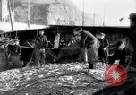 Image of Old fishermen Sidmouth England, 1916, second 11 stock footage video 65675027556