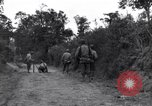 Image of 29th Division soldiers look for landmines Saint Lo France, 1944, second 3 stock footage video 65675027650