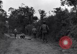 Image of 29th Division soldiers look for landmines Saint Lo France, 1944, second 6 stock footage video 65675027650