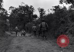 Image of 29th Division soldiers look for landmines Saint Lo France, 1944, second 9 stock footage video 65675027650