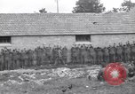 Image of German prisoners Saint Mere Eglise France, 1944, second 11 stock footage video 65675027671