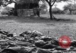 Image of German dead near Merderet River World War 2 France, 1944, second 11 stock footage video 65675027673
