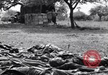 Image of German dead near Merderet River World War 2 France, 1944, second 12 stock footage video 65675027673