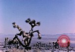 Image of Atomic Test Grable Nevada United States USA, 1953, second 10 stock footage video 65675027692