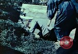 Image of Japanese workers Tokyo Japan, 1945, second 10 stock footage video 65675027708