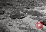 Image of United States Marines United States USA, 1945, second 6 stock footage video 65675027737