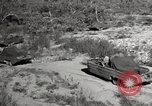 Image of United States Marines United States USA, 1945, second 9 stock footage video 65675027737