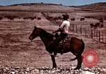 Image of Cowboys and ranches in Arizona Arizona United States USA, 1939, second 2 stock footage video 65675027894