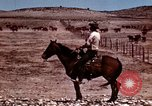 Image of Cowboys and ranches in Arizona Arizona United States USA, 1939, second 3 stock footage video 65675027894