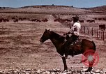Image of Cowboys and ranches in Arizona Arizona United States USA, 1939, second 5 stock footage video 65675027894