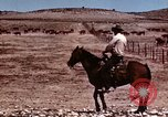 Image of Cowboys and ranches in Arizona Arizona United States USA, 1939, second 7 stock footage video 65675027894