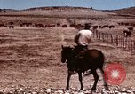 Image of Cowboys and ranches in Arizona Arizona United States USA, 1939, second 8 stock footage video 65675027894