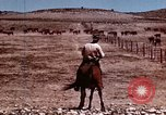 Image of Cowboys and ranches in Arizona Arizona United States USA, 1939, second 9 stock footage video 65675027894
