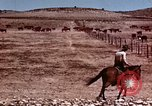 Image of Cowboys and ranches in Arizona Arizona United States USA, 1939, second 11 stock footage video 65675027894
