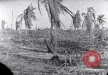 Image of wreckage on Island Marshall Islands, 1944, second 4 stock footage video 65675028039