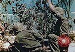 Image of Marines treat wounded Saipan Northern Mariana Islands, 1944, second 7 stock footage video 65675028042