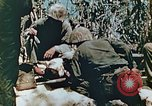 Image of Marines treat wounded Saipan Northern Mariana Islands, 1944, second 9 stock footage video 65675028042