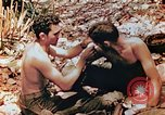 Image of Marine renders first aid to wounded buddy Saipan Northern Mariana Islands, 1944, second 3 stock footage video 65675028048