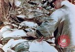 Image of Wounded marine Saipan Northern Mariana Islands, 1944, second 3 stock footage video 65675028050