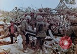 Image of U.S. marines set up camouflaged artillery  Saipan Northern Mariana Islands, 1944, second 10 stock footage video 65675028054