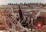 Image of Wrecked Japanese artillery pieces Saipan Northern Mariana Islands, 1944, second 11 stock footage video 65675028056