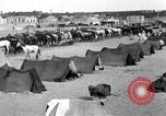 Image of Turkish cavalry camp Turkey, 1915, second 11 stock footage video 65675028064