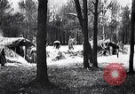 Image of Russian military reinforcements Dobrudja Romania, 1916, second 7 stock footage video 65675028073