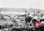 Image of Battery of French 75 field pieces Curlu France, 1915, second 10 stock footage video 65675028076