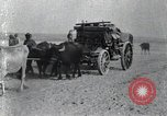 Image of Turkish soldiers World War 1 Turkey, 1918, second 6 stock footage video 65675028086